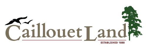 Caillouet Land LLC